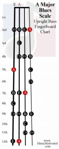 A Blues Scale upright double bass fingerboard notes chart