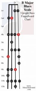 B Blues scale upright double bass fingerboard notes chart