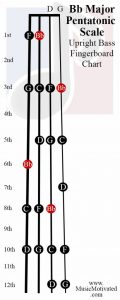 B flat Pentatonic Scale upright double bass fingerboard notes chart Bb