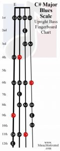 C sharp Blues scale upright double bass fingerboard notes chart