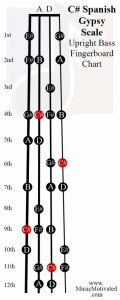 C sharp spanish scale upright double bass fingerboard notes chart