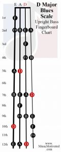 D Blues scale upright double bass fingerboard notes chart