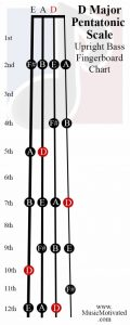 D Pentatonic scale upright double bass fingerboard notes chart