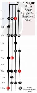 E Blues scale upright double bass fingerboard notes chart