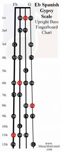 Eb spanish scale upright double bass fingerboard notes chart