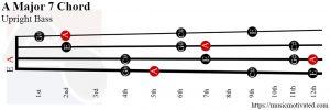 A Major 7 Upright Bass chord