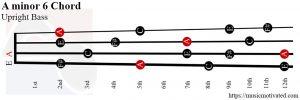 A minor 6 Upright Bass chord