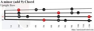 A minor (add 9) Upright Bass chord