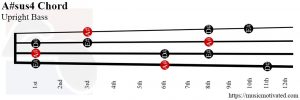 A#sus4 upright Bass chord