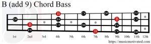 B (add 9) chord Bass