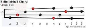 B diminished upright Bass chord