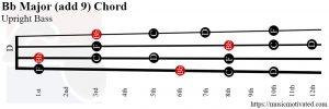 Bb Major add 9 Upright Bass chord