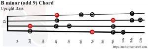 B minor (add 9) Upright Bass chord