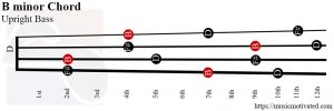 B minor Upright Bass chord