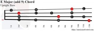 E Major add 9 Upright Bass chord